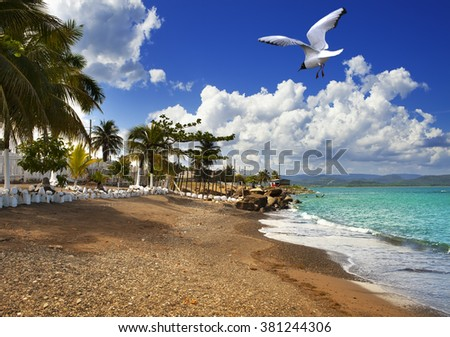Jamaica. The sea in the sunny day - stock photo