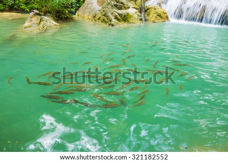 Jangle landscape with flowing turquoise water and fish of Erawan cascade waterfall at deep tropical rain forest - stock photo