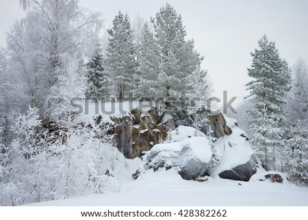 January cloudy day on the rocks of Karelia. Russia