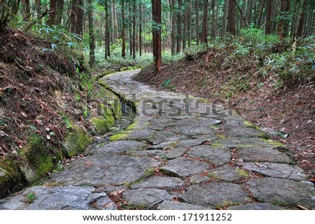 Japan - famous Nakasendo trail near Magome. Old route hundreds of years old. - stock photo