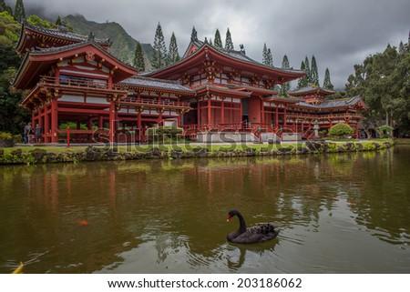 Japanese Buddhist Temple, Black Swan, Reflection Pool - stock photo