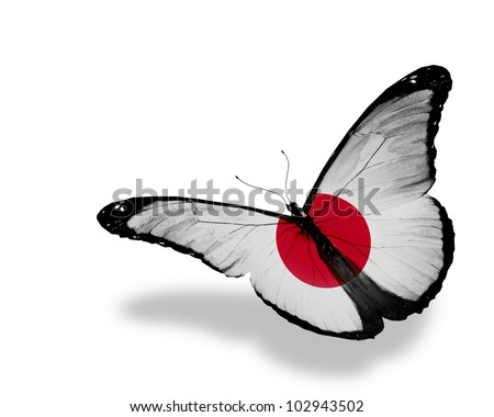 Japanese flag butterfly flying, isolated on white background - stock photo