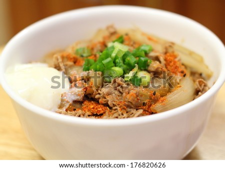 Japanese food, gyudon simmered beef and onion on rice - stock photo