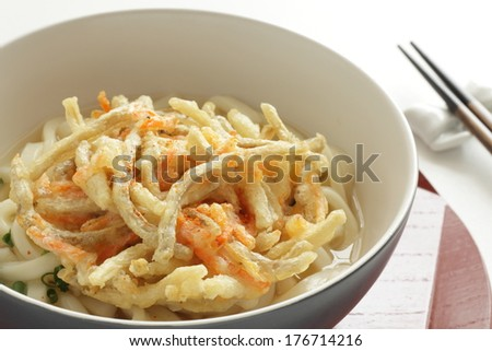 Japanese food, udon noodles and burdock tempura on white background with copy space - stock photo