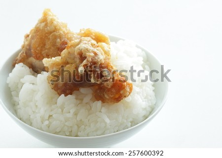 Japanese rice and fried chicken - stock photo