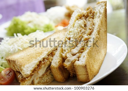 Japanese style chicken sandwich served with fresh vegetables. - stock photo