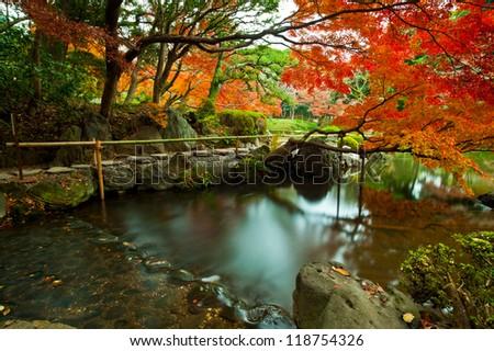Japanese style public park and garden in autumn , koishikawa korakuen , tokyo , japan - stock photo