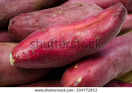 japanese sweet potato - stock photo