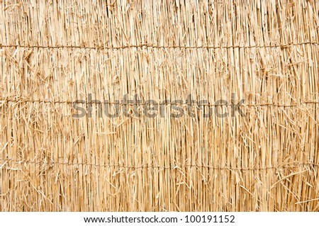 Japanese wood blind texture - stock photo