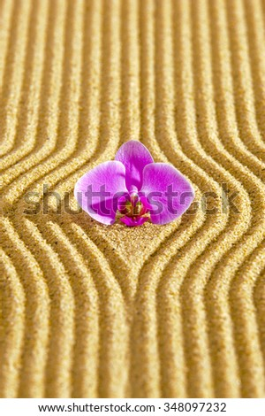 Japanese ZEN garden with textured sand and orchid flower - stock photo