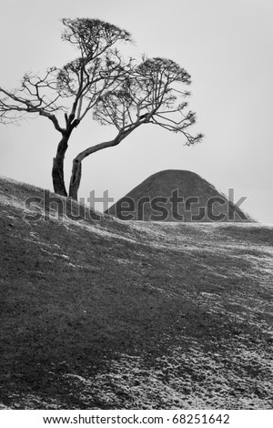 Japanese Zen Style landscape ; Mountain, tree and snow.
