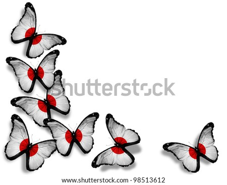 Japenese flag butterflies, isolated on white background - stock photo