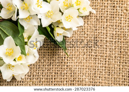 Jasmine flowers on jute background. Beautiful arrangement of flowers located on burlap vintage style useful as wallpaper, greeting card, invitation card, mothers day or wedding invitation. - stock photo