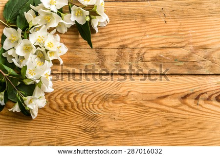 Jasmine flowers on wood background. Beautiful arrangement of flowers located on aged wooden planks vintage style useful as wallpaper, greeting card, invitation card, mothers day or wedding invitation. - stock photo
