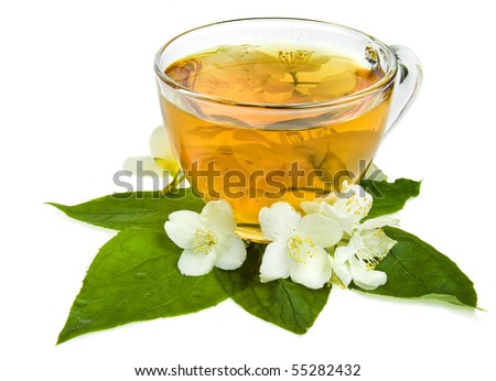 jasmine tea with fresh herb isolated on a white background  - stock photo