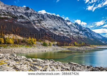 Jasper National Park, Canada. Strong shoaling Medicine Lake in the fall
