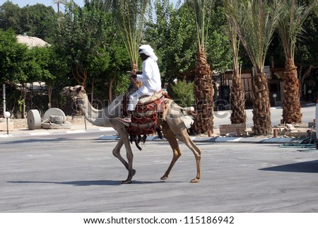 JERICHO , ISRAEL - OCTOBER 04: Unidentified Bedouin man wait tourist near his dromedary in Jericho, Israel on October 04, 2006. Many Bedouin men work as guides for day-trips in the Judea desert. - stock photo