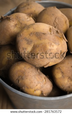 Jersey Royal new potatoes fresh out of the ground grown on the channel island of Jersey shot with shallow focus - stock photo
