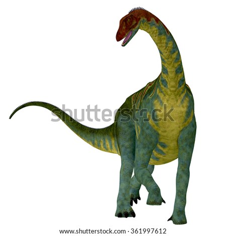 Jobaria on White - Jobaria was a herbivorous sauropod dinosaur that lived in the Jurassic Period of the Sahara Desert in Africa. - stock photo