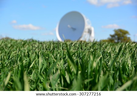 Jodrell bank observatory in the background, focus on crops in foreground, Cheshire - stock photo