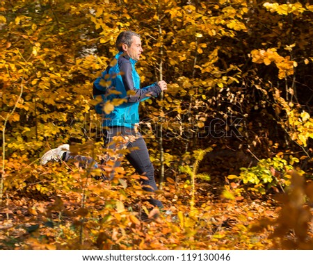 jogger in a forest in autumn - stock photo