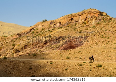 Journey in a desert - stock photo