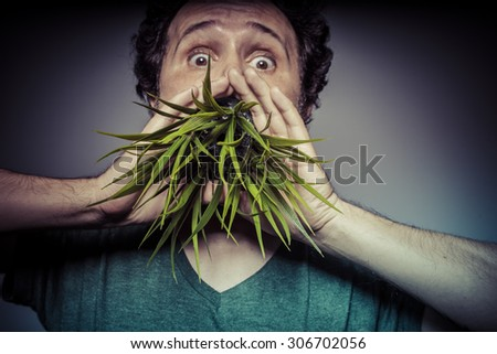 Joy, veganism concept man with green grass in the mouth - stock photo