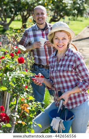 Joyful smiling elderly couple engaged in gardening with roses in the backyard garden. Focus on woman