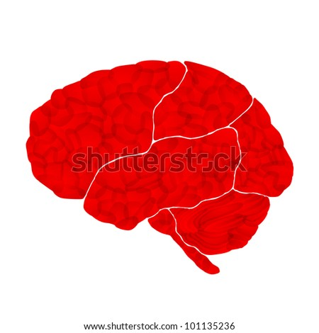 jpg, human brain, aggressive intentions, abstract background - stock photo