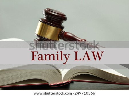 Judge's gavel on book and Family LAW text on gray background - stock photo
