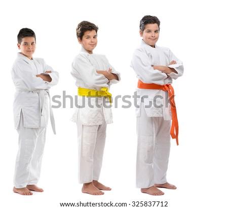 Judoka Sequence - stock photo