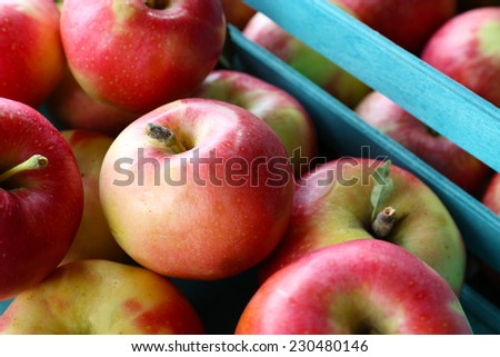 Juicy apples in box, close-up - stock photo
