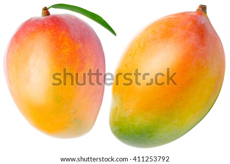 Juicy dessert mango isolated on white background