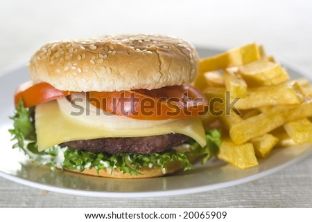 juicy hamburger meat lettuce tomato and onion mayonnaise - stock photo