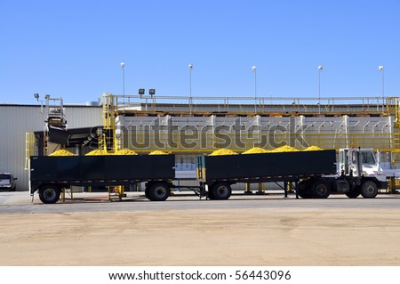 Juicy lemons are loaded onto trailers at a California processing plant