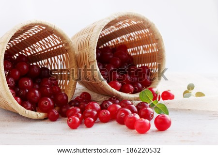 Juicy ripe cranberries is scattered from baskets - stock photo