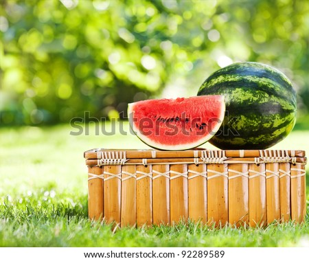 Juicy slice and watermelon on picnic hamper against natural green background in spring - stock photo