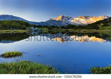 July morning - stock photo