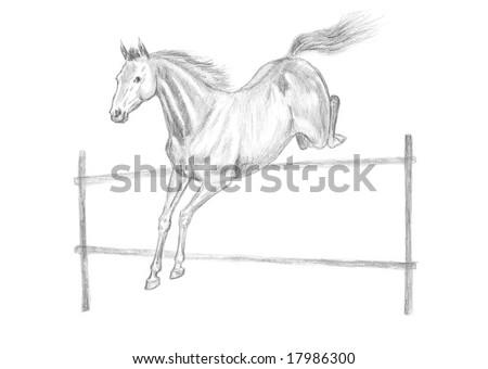 Jumping horse pencil drawing, hand-drawn. - stock photo