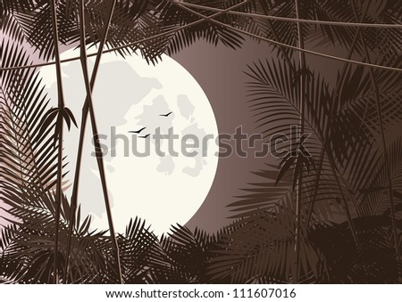 jungle forest in moon night. raster version - stock photo