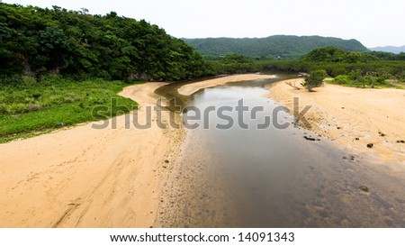 Jungle inlet at low tide - stock photo
