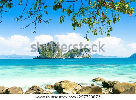 Jungle Lagoon Exotic Beach  - stock photo