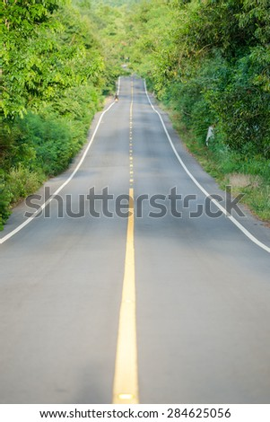 Jungle Road trip in summer - stock photo