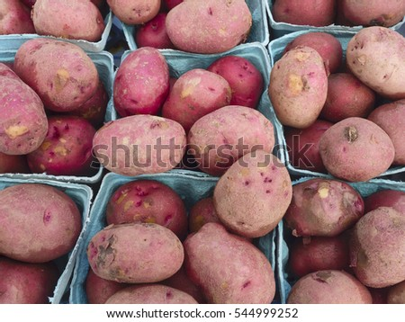 Just harvested red potatoes at farm market.