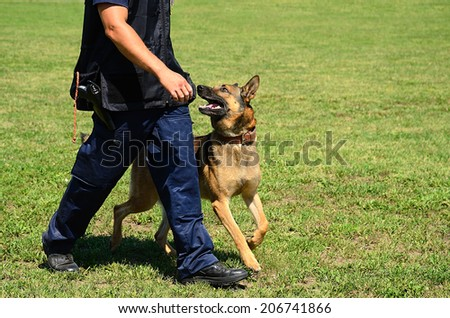 K9 police officer with his dog in training - stock photo