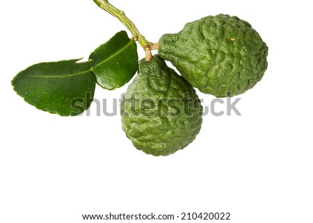 Kaffir lime isolate on white clipping path - stock photo