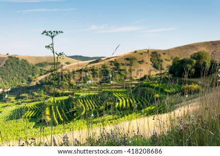 Kaiserstuhl - stock photo
