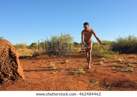 KALAHARI, NAMIBIA - JAN 24, 2016: Bushman hunter hunting in Kalahari desert. The San people, also known as Bushmen are members of various indigenous hunter-gatherer peoples of Southern Africa