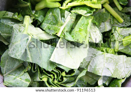 Kale is chopped into pieces. - stock photo