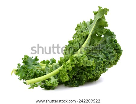 kale leafs on white background  - stock photo